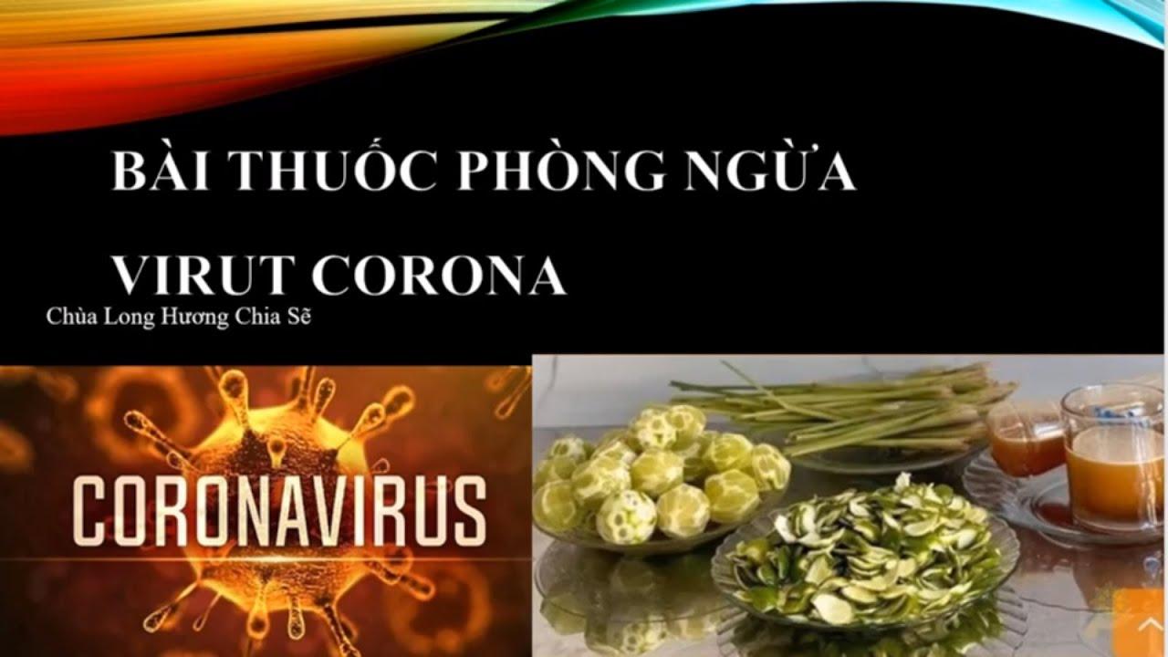 Bài thuốc phòng ngừa Coronavirus 3