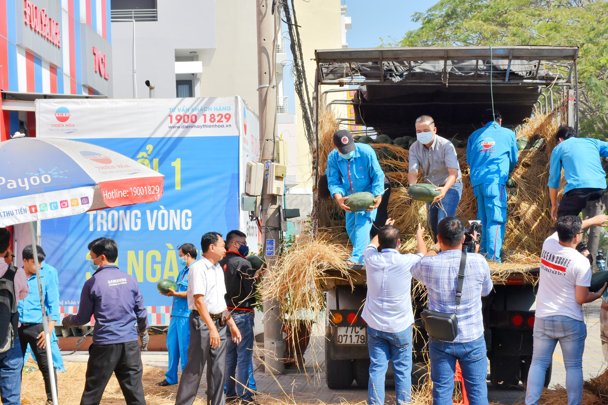 Thiên Hòa mua hàng tấn dưa hấu của nông dân tặng cho nhân viên và đối tác 29