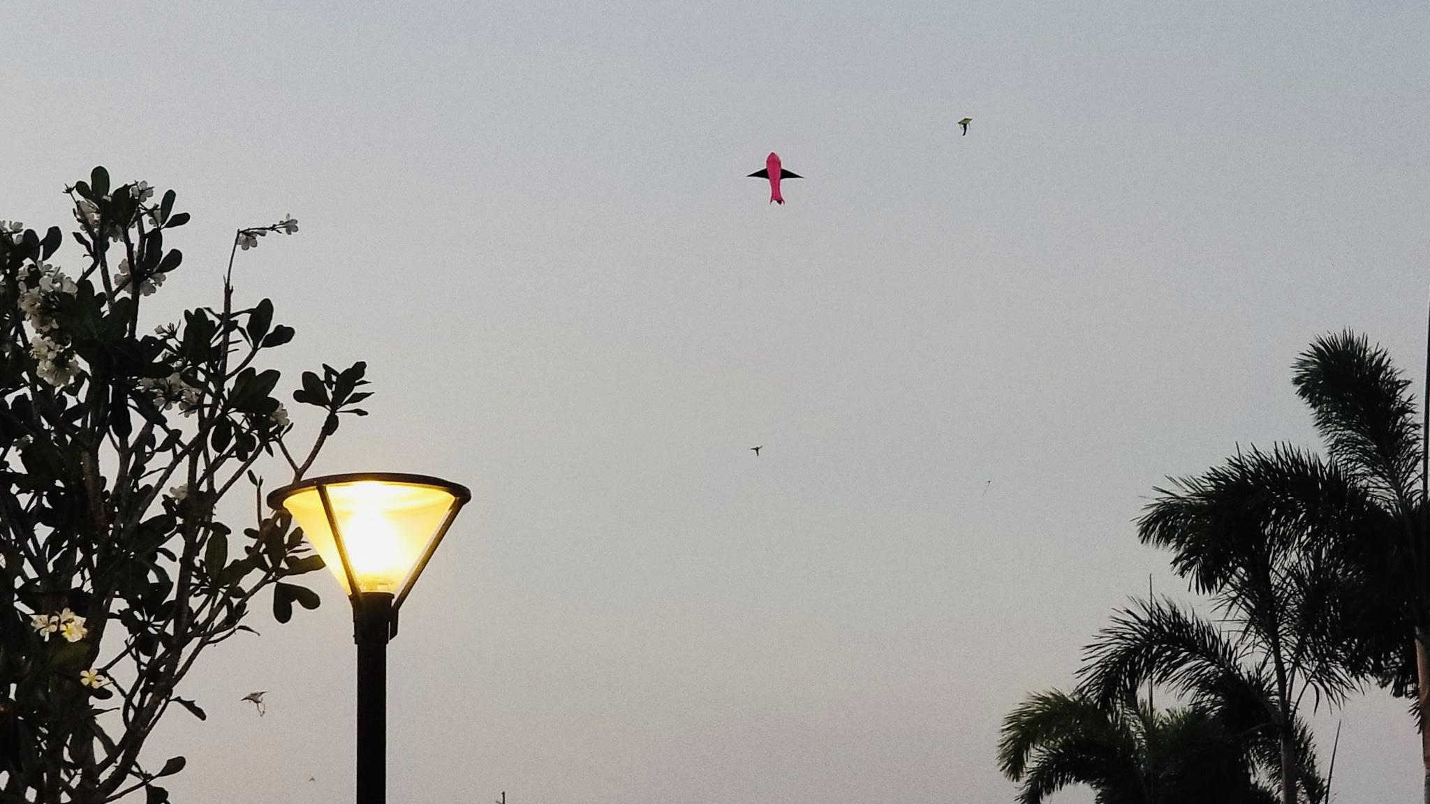 Điểm thả diều, ngắm hoàng hôn, ngắm máy bay lý tưởng ngay trung tâm Sài thành 13
