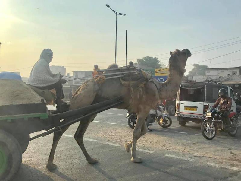 Ký sự Ấn Độ hoang dã và huyền bí: Taij Mahal - Biểu tượng tình yêu vĩnh cửu 25