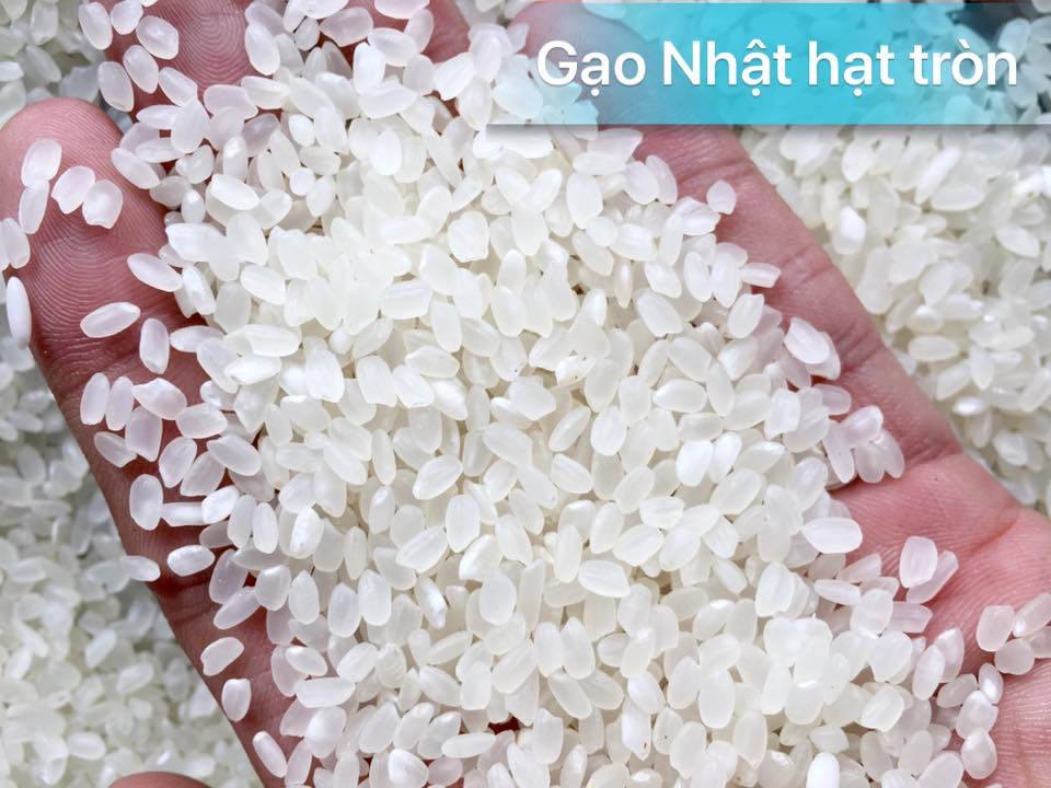 """Nghi ngờ gạo thường """"đội lốt"""" gạo Nhật cao cấp bán đầy siêu thị Co.op Mart 3"""
