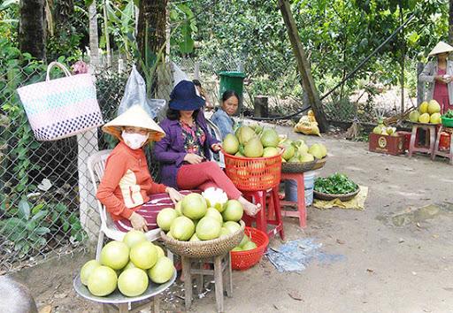 """""""Ăn trái cây như ở miền Tây"""" ngay tại Quảng Nam 10"""