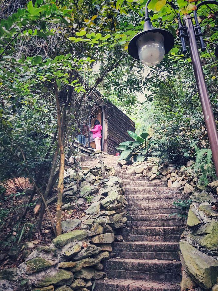 Có một ngôi nhà bên rừng xinh đến thế... 6