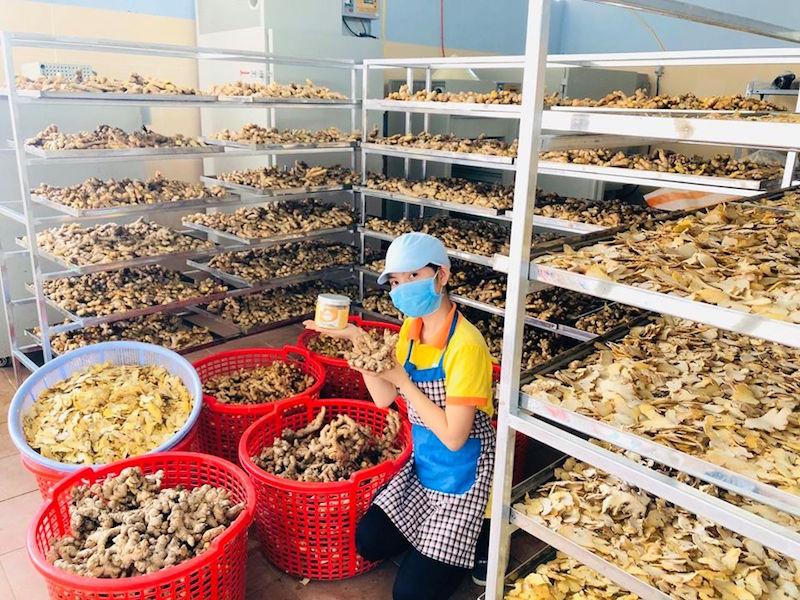 Minh Nga, cô gái từ bỏ Sài Gòn hoa lệ về huyện miền núi bán nông sản rừng BHNong 6