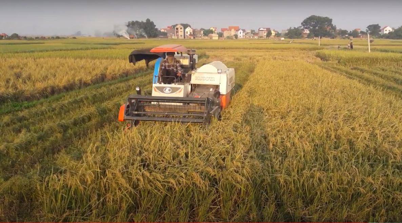 Miễn thuế đất nông nghiệp - nên miễn cho ai? 2