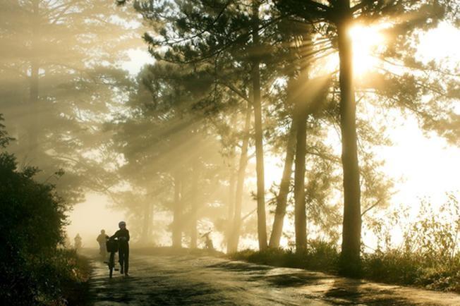 Những chốn săn mây lý tưởng tại Đà Lạt 1