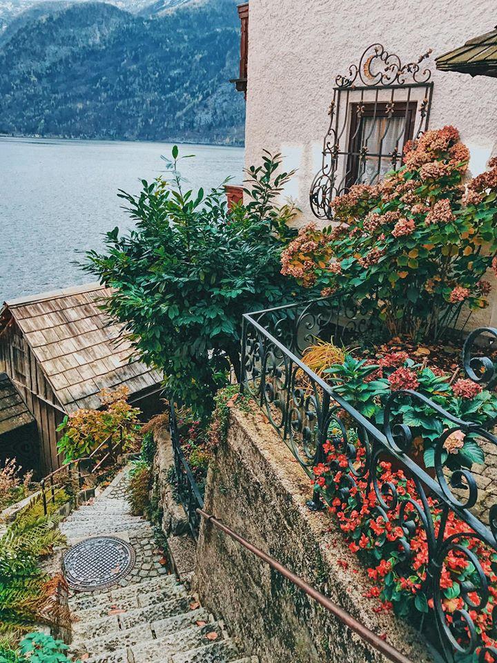 Hallstatt - thị trấn nhỏ lâu đời với vẻ đẹp như bước ra trong chuyện cổ tích 11