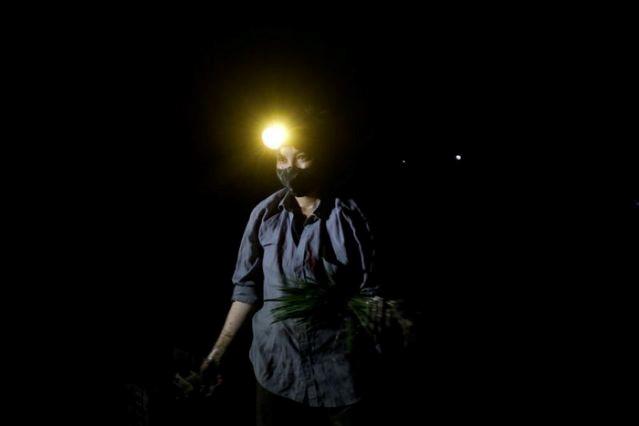 Nông dân Việt Nam buộc phải làm việc vào ban đêm để tránh cái nắng gay gắt ban ngày 1