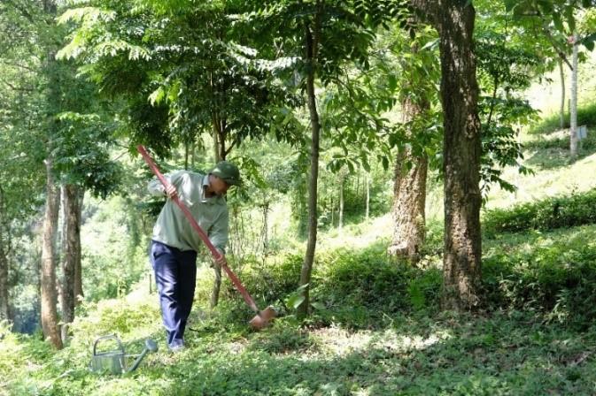 Vinamilk trồng cây tại các địa danh lịch sử mang lại giá trị tinh thần và lợi ích thiết thực 10