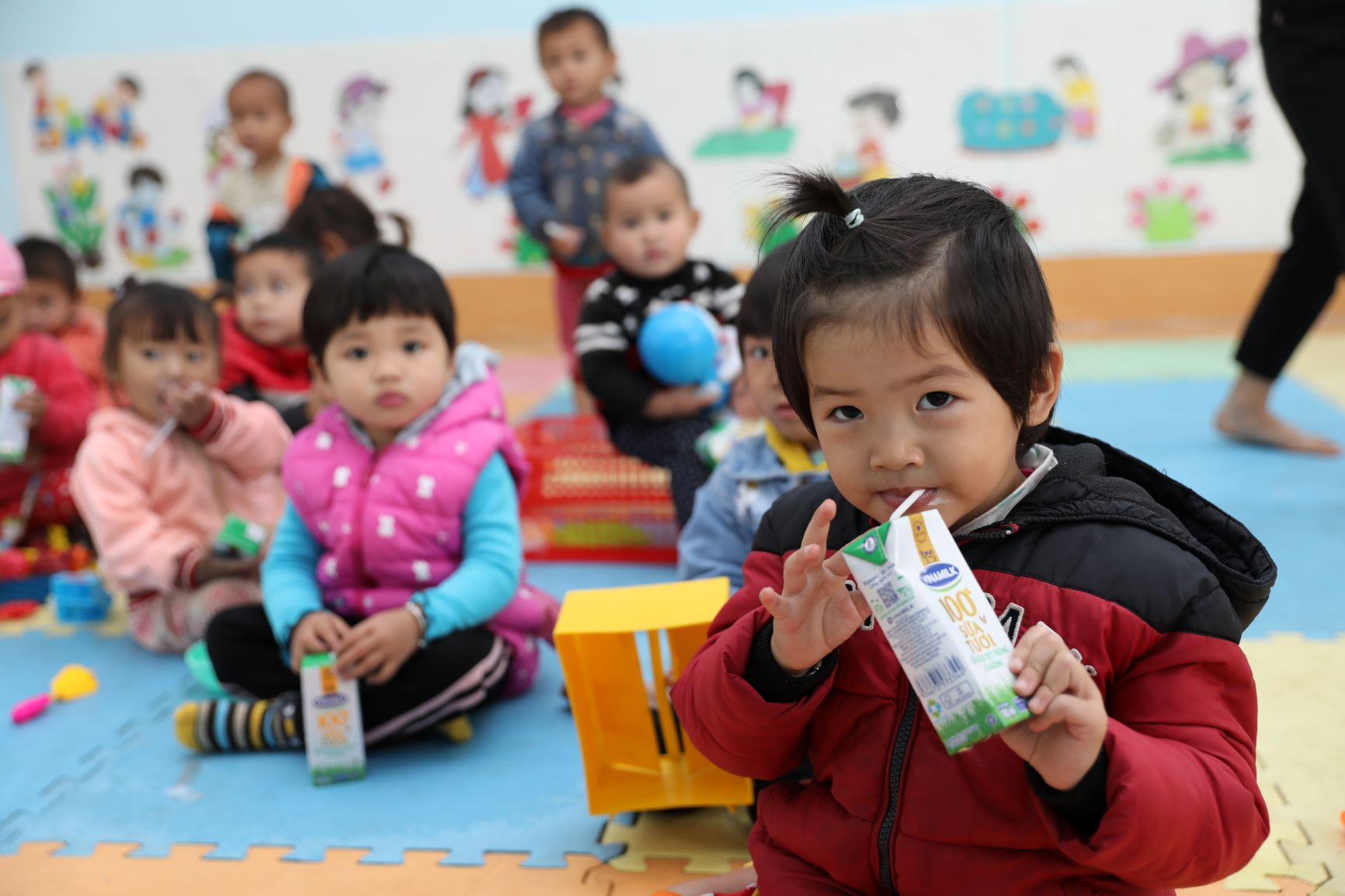 Đến trường với niềm vui uống sữa của trẻ vùng cao Hà Giang đã không còn là ước mơ 8
