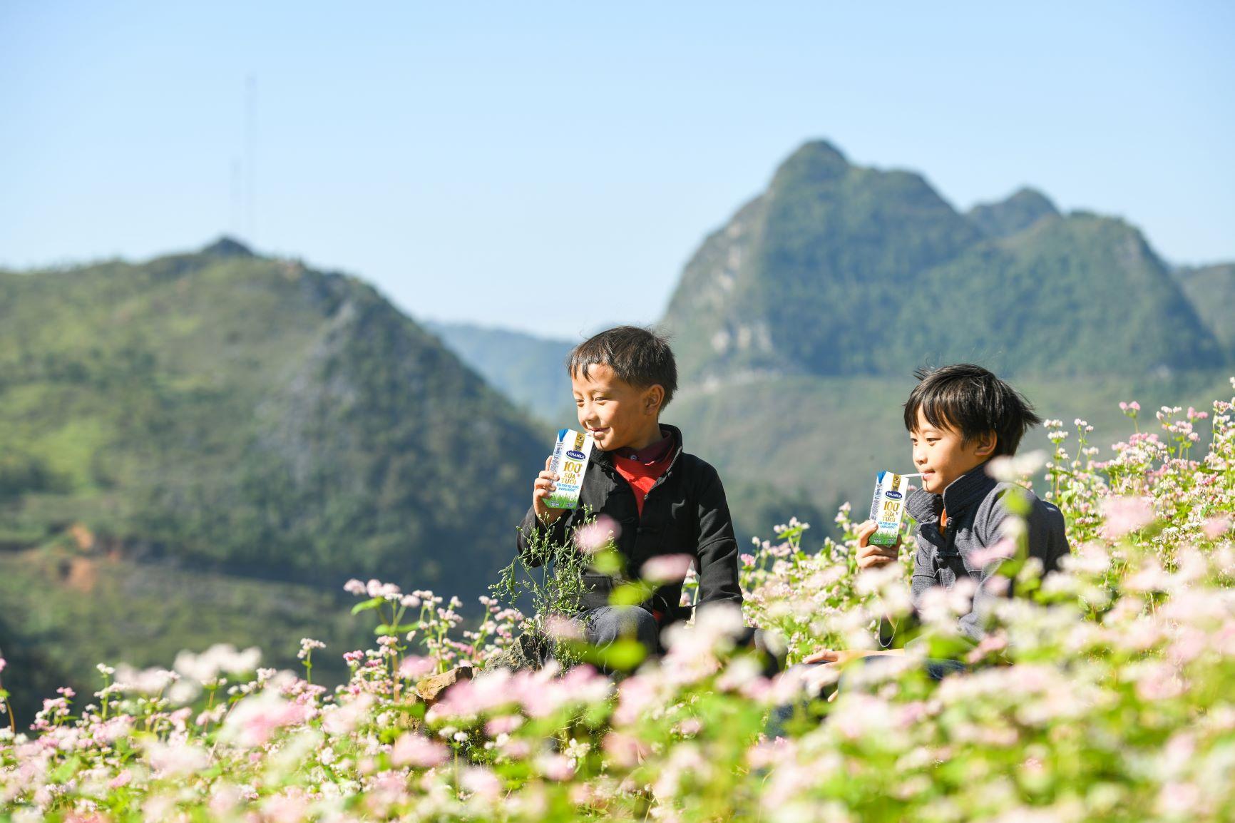 Đến trường với niềm vui uống sữa của trẻ vùng cao Hà Giang đã không còn là ước mơ 14