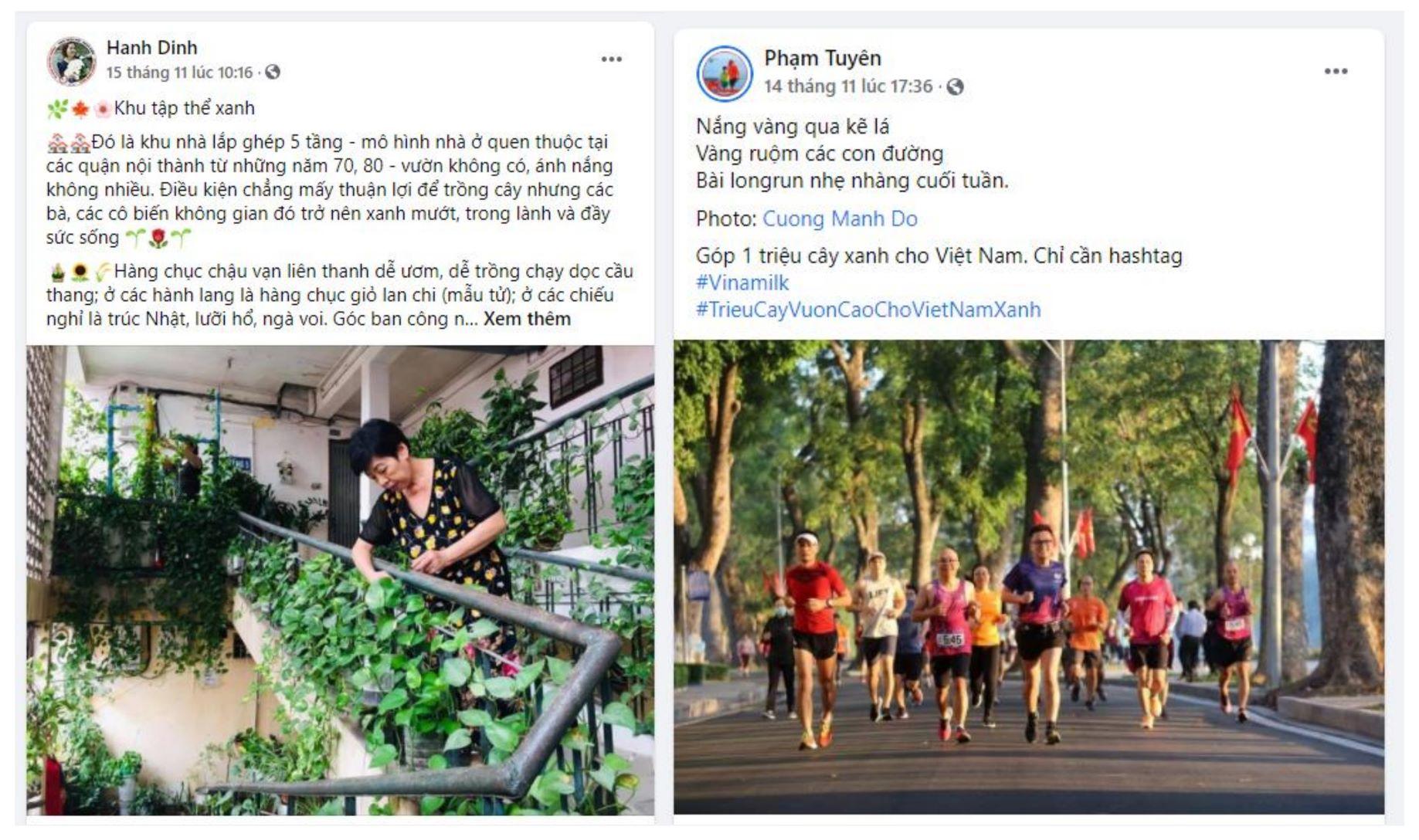 """Chiến dịch """"xanh"""" của cộng đồng khép lại, hành trình trồng cán mốc triệu cây xanh cho Việt Nam bắt đầu 1"""