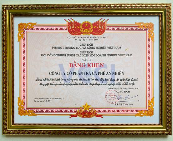 Cú chuyển hướng táo bạo của Hoa khôi Doanh nhân Việt Nam 2020 4