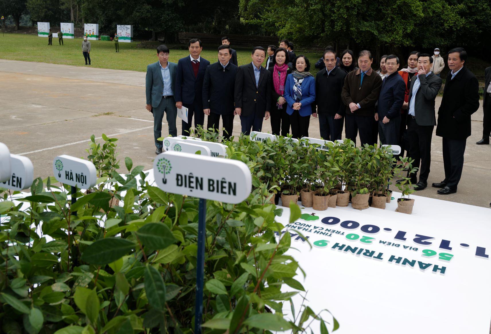 """Quỹ 1 triệu cây xanh cho Việt Nam của Vinamilk - Chương trình vì môi trường tạo được """"dấu ấn xanh"""" đặc biệt với cộng đồng 11"""