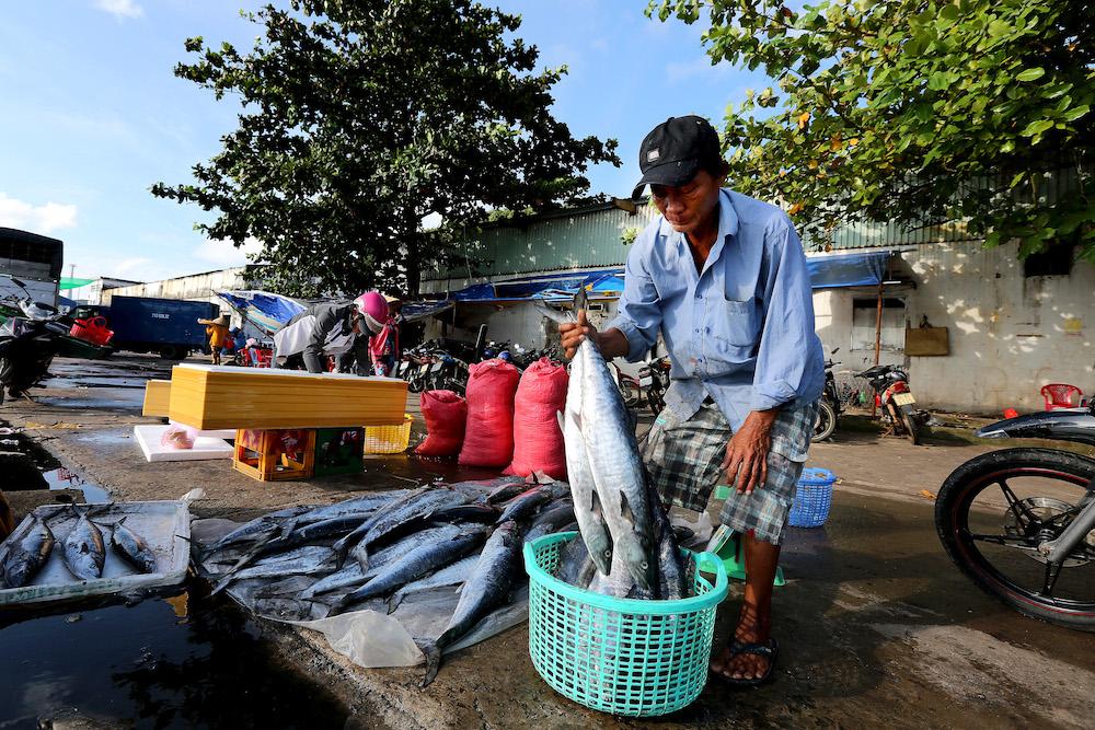 Nam Đảo - Phú Quốc: Vẻ đẹp của sự bất tận 15