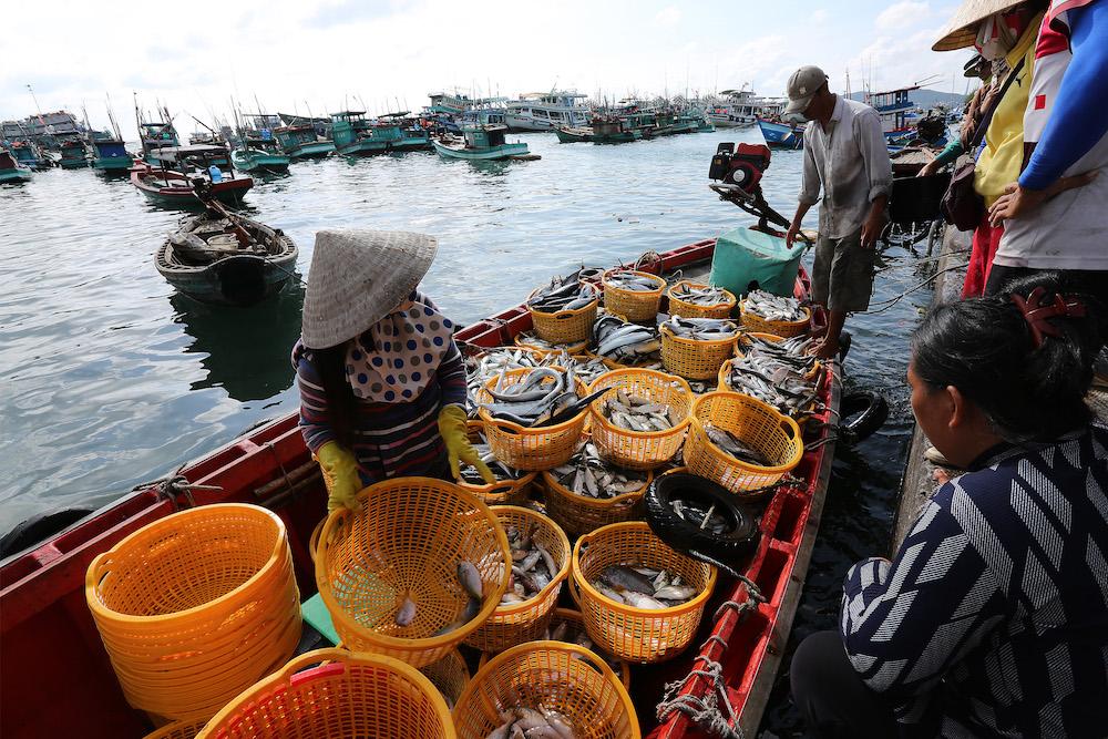 Nam Đảo - Phú Quốc: Vẻ đẹp của sự bất tận 14