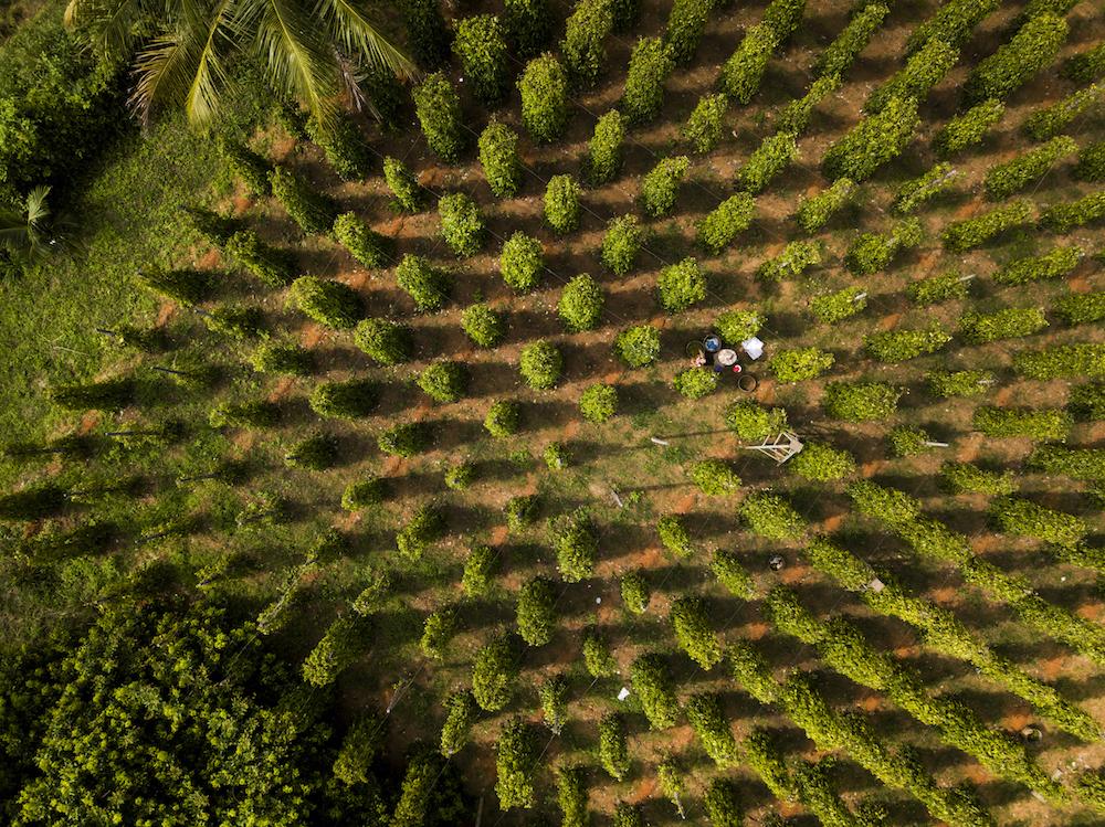 Nam Đảo - Phú Quốc: Vẻ đẹp của sự bất tận 19