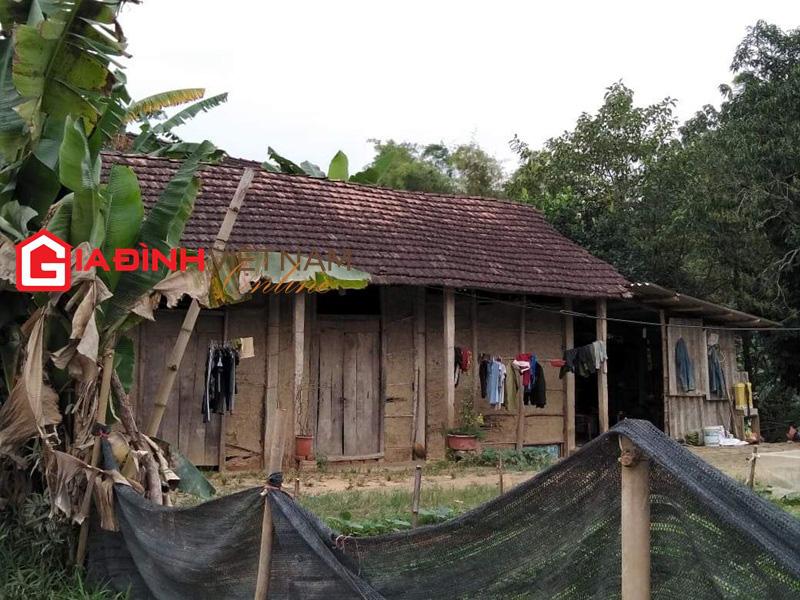 Nữ sinh Tuyên Quang ở nhà vách đất, thủ khoa tỉnh, đỗ Đại học Y Hà Nội 3