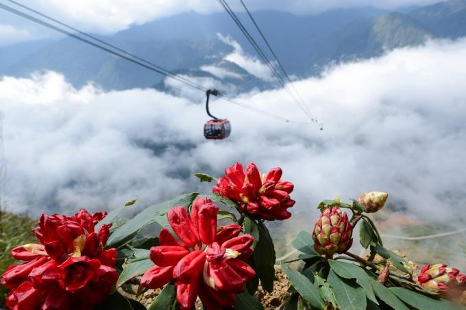 Hút khách về miền Tây Bắc hè này, Lào Cai tung loạt ưu đãi khủng tới 70% 4