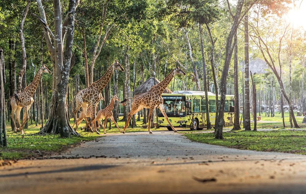 Vingroup khai trương Siêu quần thể nghỉ dưỡng, vui chơi, giải trí hàng đầu Đông Nam Á - Phú Quốc United Center 13