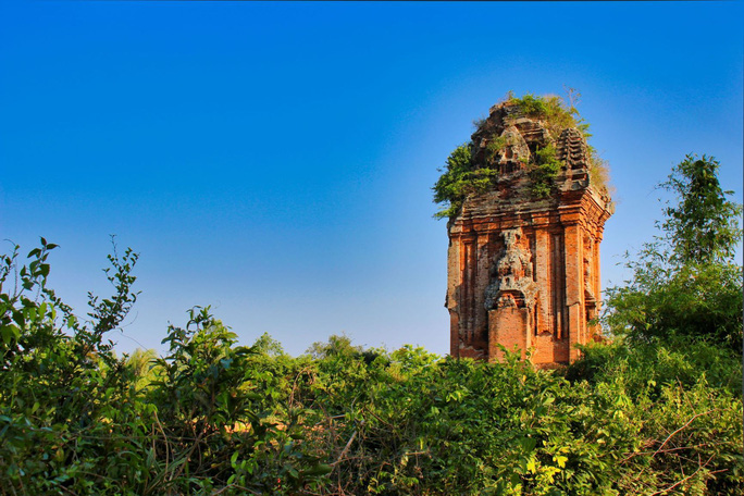 Mê hoặc tháp Chăm Bình Định 5