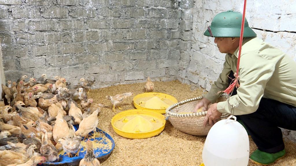 Gà ri vàng rơm - Đặc sản nổi tiếng Uông Bí 3