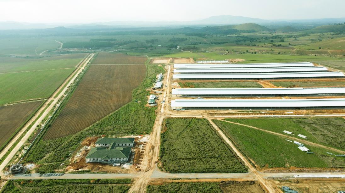 Forbes Việt Nam công bố Top 50 doanh nghiệp niêm yết tốt nhất 2021, Vinamilk giữ vững vị trí 9 năm liên tiếp 4