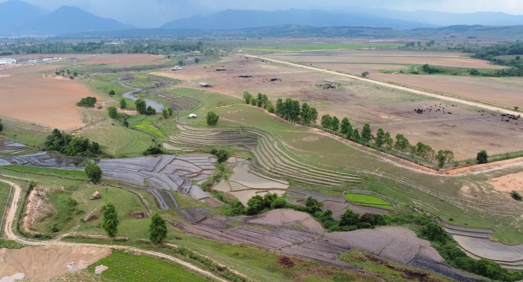 """Siêu dự án trang trại của Vinamilk tại Lào sẽ """"cho sữa"""" vào đầu năm 2022 4"""
