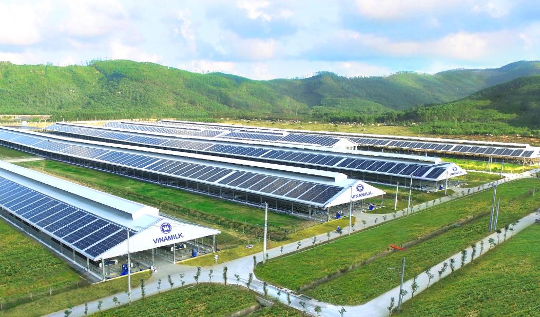 """Siêu dự án trang trại của Vinamilk tại Lào sẽ """"cho sữa"""" vào đầu năm 2022 6"""