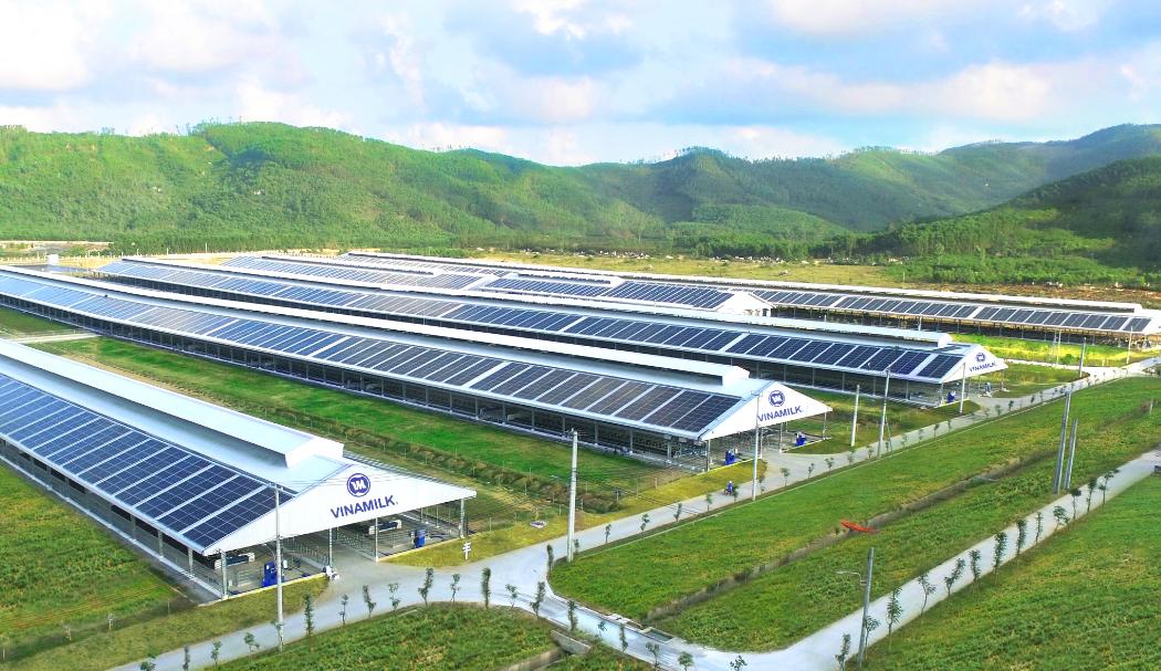 Forbes Việt Nam công bố Top 50 doanh nghiệp niêm yết tốt nhất 2021, Vinamilk giữ vững vị trí 9 năm liên tiếp 7
