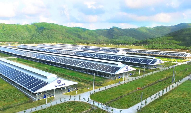 Quản trị doanh nghiệp tại Vinamilk – Bước đà cho sự phát triển bền vững 3