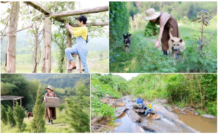 Cặp vợ chồng bỏ phố về quê, mở trang trại 1 ha trong dịch 7
